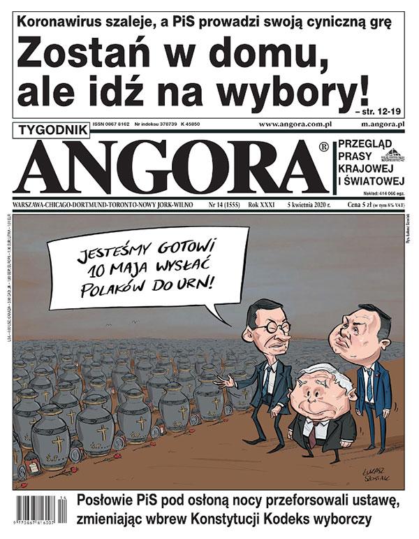 angora