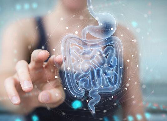 Jak wybrać dobry probiotyk dla dorosłych